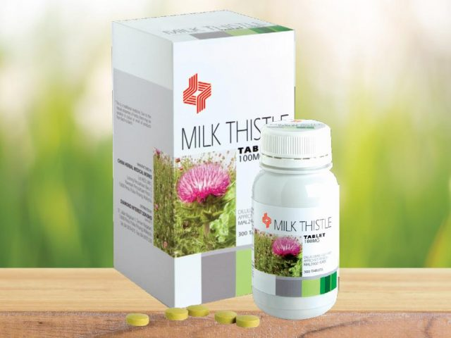 http://dynapharmafrica.net/mozambique/wp-content/uploads/2019/01/Milk-Thistle-640x480.jpg