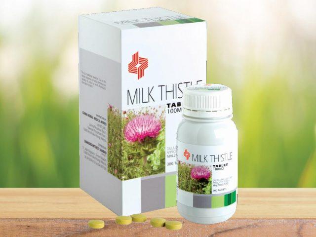 http://dynapharmafrica.net/wp-content/uploads/2019/01/Milk-Thistle-640x480.jpg
